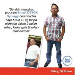 Jual Smart Detox Synergy Aman Sehat di Ambon Maluku 085755552527