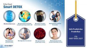 Mengapa Kita Perlu Membersihkan Organ Tubuh Kita Melalui Detoksifikasi