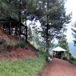 Berlibur ke Hutan Goa Pinus yang Sejuk di Kota Batu