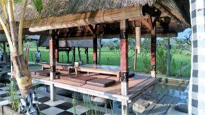 Makan Bebek Goreng Enak di Sawah Indah Resto Ubud Bali