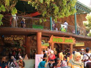 Wisata Edukasi Untuk Anak di Batu Secret Zoo Kota Batu